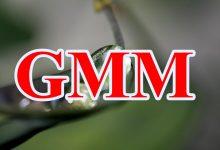 Hướng dẫn hồi quy GMM toàn tập