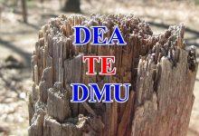 Phân tích bao dữ liệu DEA Hiệu quả kỹ thuật
