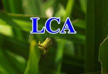 phân nhóm LCA phân tích lớp tiềm ẩn