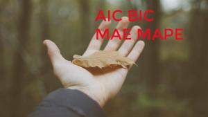 721910b4531d05998040b56865ddceb815a1000d 300x169 - Cách tính giá trị các chỉ số AIC BIC MAE MAPE MSE RMSE